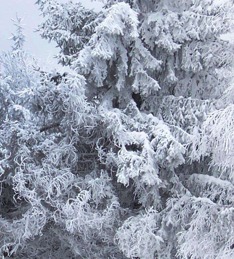 21 grudnia przywitała nas astronomiczna zima